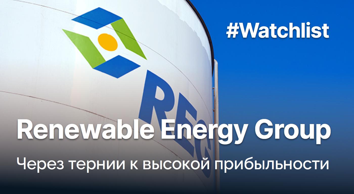 Обзор Renewable Energy Group - Private