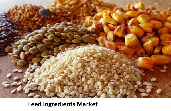 Feed Ingredients Market Research Sales, Forecast, Regional