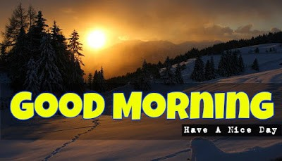Latest Good Morning Images Photos Pictures Wallpapers Free Download